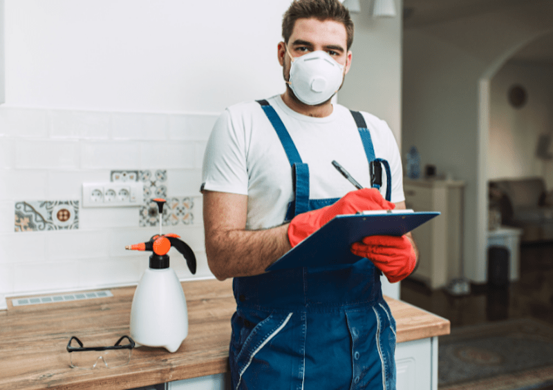 pest control in kent technician